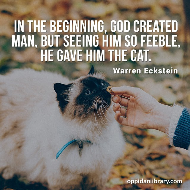 IN THE BEGINNING, GOD CREATED MAN, BUT SEEING FEEBLE, HE GAVE HIM THE CAT. WARREN ECKSTEIN