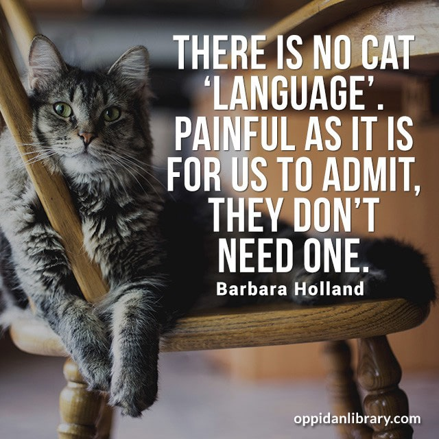 THERE IS NO CAT LANGUAGE PAINFUL AS IT IS FOR US TO ADMIT, THE DON'T NEED ONE. BARBARA HOLLAND