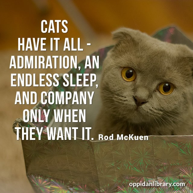 CATS HAVE IT ALL ADMIRATION, AN ENDLESS SLEEP, AND COMPANY ONLY WHEN THEY WANT IT. ROD MCKUEN