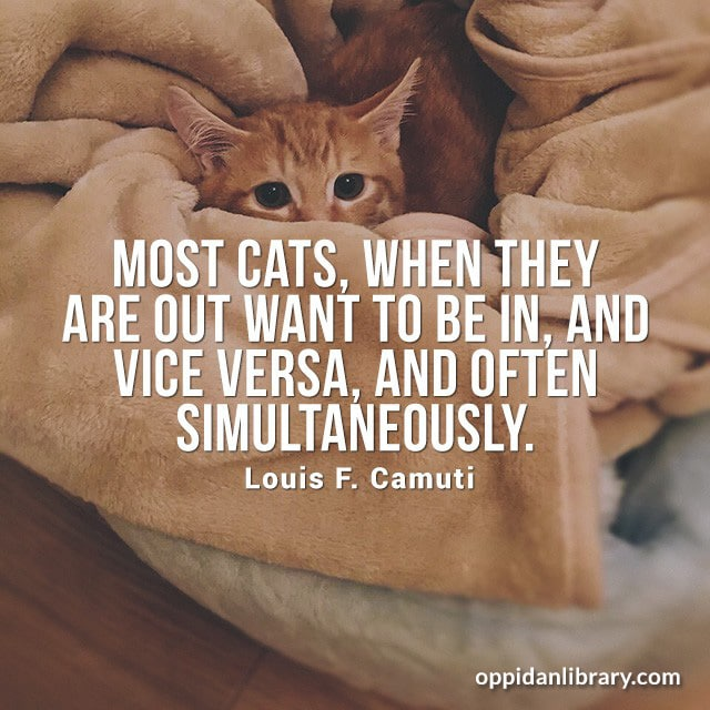 MOST CATS, WHEN THEY ARE OUT WANT TO BE IN, AND VICE VERSA, AND OFTEN SIMULTANEOUSLY. LOUIS F. CAMUTI