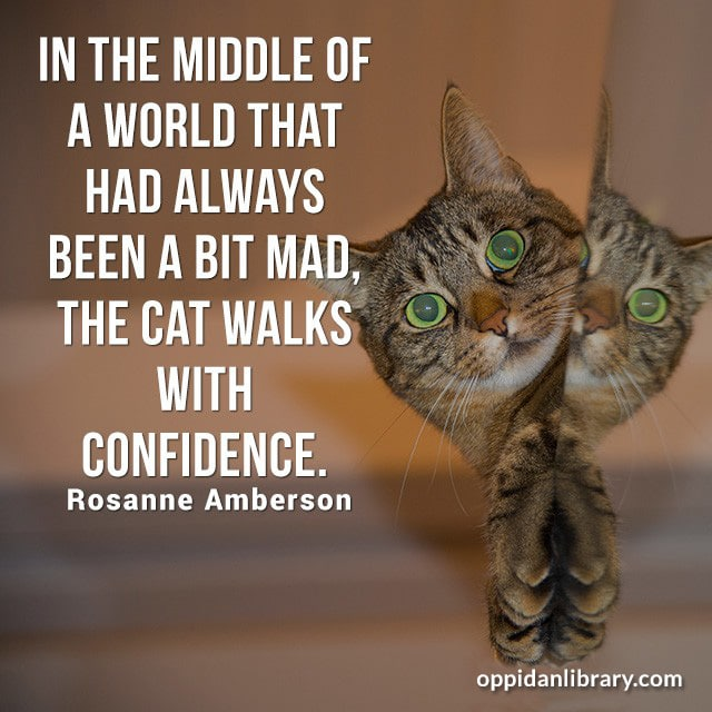 IN THE MIDDLE OF A WORLD THAT HAD ALWAYS BEEN A BIT MAD THE CAT WALKS WITH CONFIDENCE. ROSANNE AMBERSON