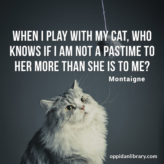 WHEN I PLAY WITH MY CAT, WHO KNOWS IF I AM NOT A PASTIME TO HER MORE THAN SHE IS TO ME? MONTAIGNE