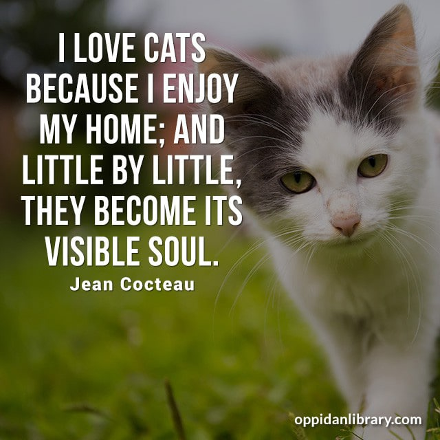 I LOVE CATS BECAUSE I ENJOY MY HOME: AND LITTLE BY LITTLE THEY BECOME ITS VISIBLE SOUL. JEAN COCTEAU