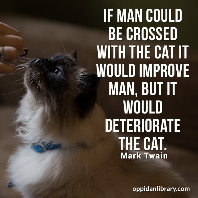 IF MAN COULD BE CROSSED WITH THE CAT IT WOULD IMPROVE MAN, BUT IT WOULD DETERIORATE THE CAT. MARK TWAIN