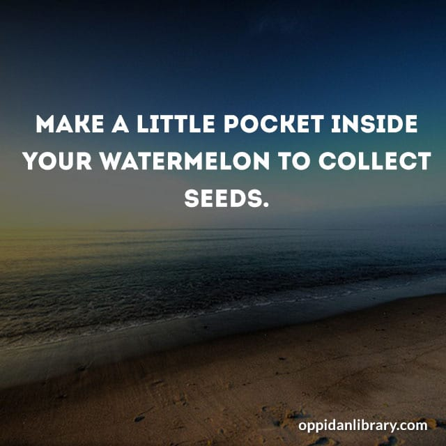 MAKE A LITTLE POCKET INSIDE YOUR WATERMELON TO COLLECT SEEDS.