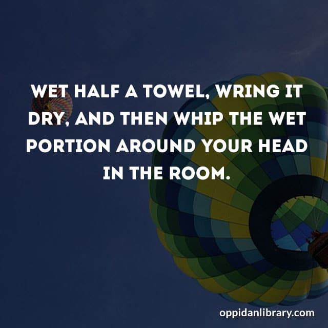 WET HALF A TOWEL, WRING IT DRY, AND THEN WHIP THE WET PORTION AROUND YOUR HEAD IN THE ROOM.